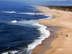 Praia da Vieira (ashera08) Tags: leiria portugal ashera paisagens photos picasa