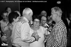 2017 Bosuil-Het publiek bij Steady State 35-ZW