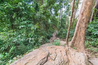 ramkhamhaeng national park - thailande 53