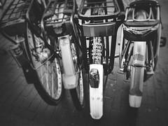 Love Stories (Rolling Spoke) Tags: bike bicycle bici bicicleta bicicletta bisiklet ciclismo fiets fahrrad velo street streetphotography tagline love stories bnw blackandwhite amsterdam mono monochrome fender sticker parked bikes bicycles