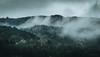 autumn (chrisb.foto) Tags: autumn herbst nebel fog rain rainy regen düster gloomy forest wald bäume woods dillenburg ldk lahndillkreis hessen germany landscape landschaft cold kalt mountain natur nature mittelgebirge westerwald