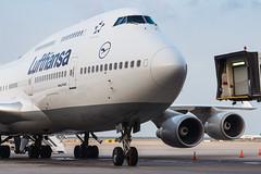Lufthansa B747-400 D-ABTL 003 (A.S. Kevin N.V.M.M. Chung) Tags: gate lh explore aviation aeroplane aircraft plane jet pudong airport pvg airside spotting transport boeing b747400 lufthansa jumbo queen