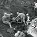 Marines Capturing Japanese Soldier, Iwo Jima, 1945