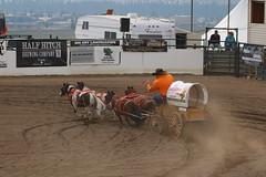 Mini Chuck wagon Racing at Cochrane fair Aug 20th 2017 (davebloggs007) Tags: mini chuck wagon racing cochrane fair aug 20th 2017