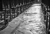 El camí - The way (Miquel Lleixà Mora [NotPRO]) Tags: blanc negre perspectiva instagram miquel cami way