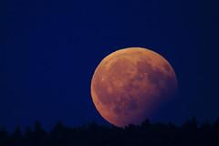 Red Moon Rising (Max Angelsburger) Tags: luna lunar eclipse moon mond bloodmoon blutmond finsternis