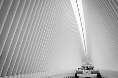 We'll meet on the bridge at The Oculus (ho_hokus) Tags: 2017 fujix20 fujifilmx20 manhattan nyc newyorkcity path worldtradecenter architecture building design futuristic station oculus monochrome blackandwhite