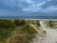 DSCN1716 (1DesertRose) Tags: jervisbay beach australianbeaches beachscene greenery stormy australian sandwalkway sand whitesands clouds darksky ocean seaside