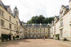 Chateau d'Usse (Hans de Cortie) Tags: rignyussé centrevaldeloire frankrijk fr