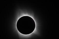 IMG_7236.jpg (dnovotny) Tags: canon60d sunspots totalsolareclipse primefocus molalla eclipse celestronomnixlt150 astrophotography
