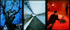 O Tempo - Le Temps (terencekeller) Tags: olympus pen eed fujifilm superia xtra 400 35mm film half frame meio quadro penography cor terence keller v370 olympuspenee2 halfframe meioquadro tríptico tempo temps mon