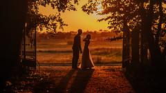 05.08.2017 (Fregoli Cotard) Tags: couple wedding weddingfilm weddingphotography love sunset silouette againtsthelight dailyjournal dailyphoto dailyphotograph dailyproject everydayjournal everydayphotography everydayphoto everyday photojournal photodiary photographicaljournal 365 365daily 365dailyproject 365dailyphoto 365dailyphotography 365days 365project 365photoproject 365photography 365photos 365photochallenge visualjournal visualdiary 217365 217 217of365