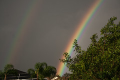 Irma's Rainbow (AngelaC2009***) Tags: 2017 summer september florida riverview backyard weather rainbow hurricaneirma hurricane canoneosdigitalrebelxt tampabayarea