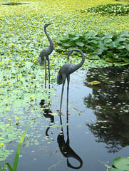 The herons of Heron Lake (Ruth and Dave) Tags: heronlake vandusen botanicalgarden vandusengardens vancouver heron sculpture statue two reflection art garden pond lake lilypond waterlilies