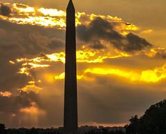 2017.09.17 DC People and Places Washington, DC USA 8861
