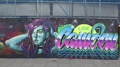 Irony + Candie graffiti, Camden (duncan) Tags: graffiti camden streetart irony candie