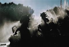 horseback water riding (omnia_mutantur) Tags: cavalli horses caballos chevaux bordeaux aquitania aquitaine fontana fountain acqua agua eau water fuente fonte animali animals animaux animais fontaine fontainedesgirondins bronzo bronze bronce quinconques francia frança france