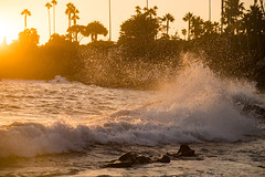 SPLASH! (itz_a_weird_world) Tags: ifttt 500px sunset water nature beach light waves horizon california splash sundown force laguna golden hour palmtrees calif