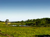Landscape (Rhyan Fallci) Tags: landscape paisagem fazenda açude riacho lago rural farm brazil grama verde arvore ceu canon sx400 400 is