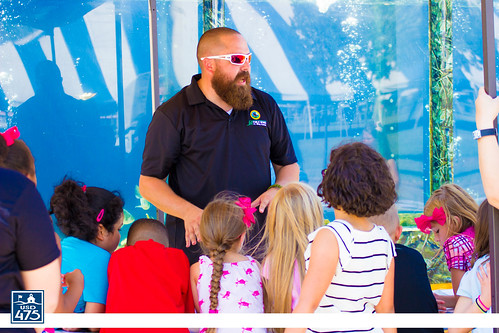"2017 Aquarium on Wheels • <a style=""font-size:0.8em;"" href=""http://www.flickr.com/photos/150790682@N02/23488151878/"" target=""_blank"">View on Flickr</a>"