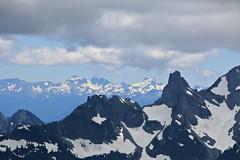 Mount Rainier National Park (Bella Lisa) Tags: mountrainiernationalpark sourdoughmountains washington sunrisevisitorcenter degepeak mtrainier emmonsvista curlyeverlasting wildflowers wilderness nationalpark washingtonstate sunsetpoint hiking emmonsglacierevergreens pines pinetrees