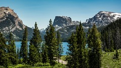 Green River Lake (ssnidey) Tags: greenriver wyoming headwaters greenriverlakes tetons grandtetons pinetrees lake cliffs mountains squaretopmountain landscape