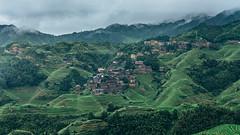 山居歲月.貮 (Tomas Lei) Tags: china 龍脊梯田 rice terraces sonya7 landscape green