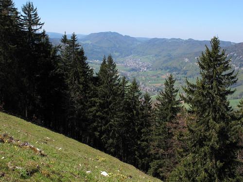 Schönenberg_027