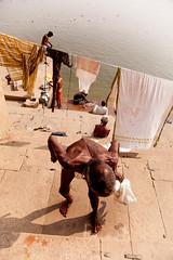 ind-5209 (Ed Peters 286) Tags: gangesriver india varanasi laundry