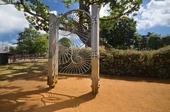 DSC_2346 (Resery) Tags: london hornimanmuseum parks gardens