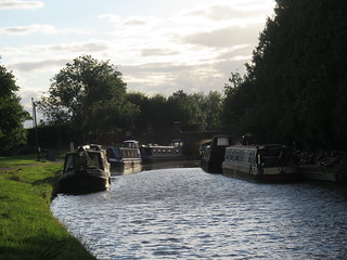 Evening on the canal
