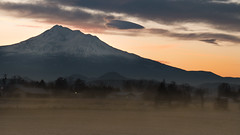 Shasta Sunrise (Michelle de Vries) Tags: mountshasta sunrise california jefferson state mist farm