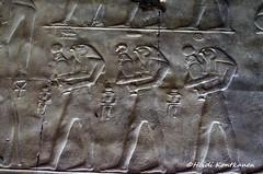 Ancient Egyptian ascent to heaven (konde) Tags: soulsofpeandnekhen pe setii templeofsetii newkingdom 19thdynasty art ancientegypt chapel relief abydos