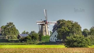 Windmill De Hoop, Rha, Bronckhorst, Netherlands - 4545