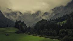 Valley of Trettach (Netsrak) Tags: bayern deutschland alpen berge berg gebirge baum bäume wald tal trettach trettachtal
