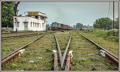 MG memories (david.hayes77) Tags: mailani uttarpradesh india 2015 alco ner ir indianrailways ydm4 mailanijunction metregauge 6755 mg train52239 52239