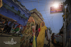 indian Rajasthan (Albert Photo) Tags: bluecity india indianrajasthan outdoor streethawker alley market oldtown