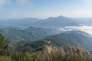 doi pha tang - thailande 10