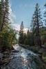 2017Seki-089-HDR (chenhengyu) Tags: 20170901 crystalcave kingcanyonnationalpark labourday longweekend rv seki sequoianationalpark sequoiatree