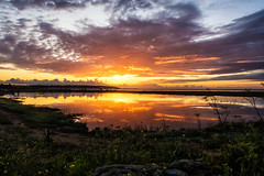 Pooled beauty (@bill_11) Tags: pegwellbay themes isleofthanet places england kent weather sunrise