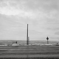 Along a Highway, Washington (austin granger) Tags: washington highway roadside winter jesus cross stopsign religion belief message cold barren stark poles mind evidence square film gf670