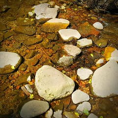 2017-09-07 13.41.35-1 (vibhaskendzia) Tags: sedona arizona trail hike callofthecanyon westfork