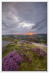 ABC_4108 - Explored (Lynne J Photography) Tags: peakdistrict curbaredge heather sunset clouds curbar purple peak district