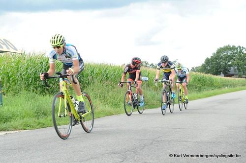 Omloop Vlaamse gewesten (355)