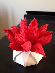Red Leaf in Pot (uqbarryn) Tags: lang jackson floderer crumpling crumple sculpture paper art origami curved mixed