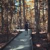 go. (Philipp Sarmiento) Tags: philipp sarmiento lifestyle sunset colors forest canon sigma life regensburg ratisbona boy freelance influencer