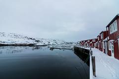 IMG_2532 (alessandro orfanù) Tags: norway lofoten vesteralen hurtigruten winter snow northernlight