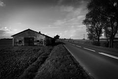 in the middle of nowhere... (Neko! Neko! Neko!) Tags: blackandwhite blackwhite bw mono monochrome europe easterneurope poland polska countryside road middleofnowhere nowhere feeling emotion selfdiscovery