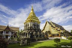 0S1A4144 (Steve Daggar) Tags: chiangmai thailand travel buddhist monk markets street candid asia
