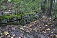 Sunken Garden Ruins 2